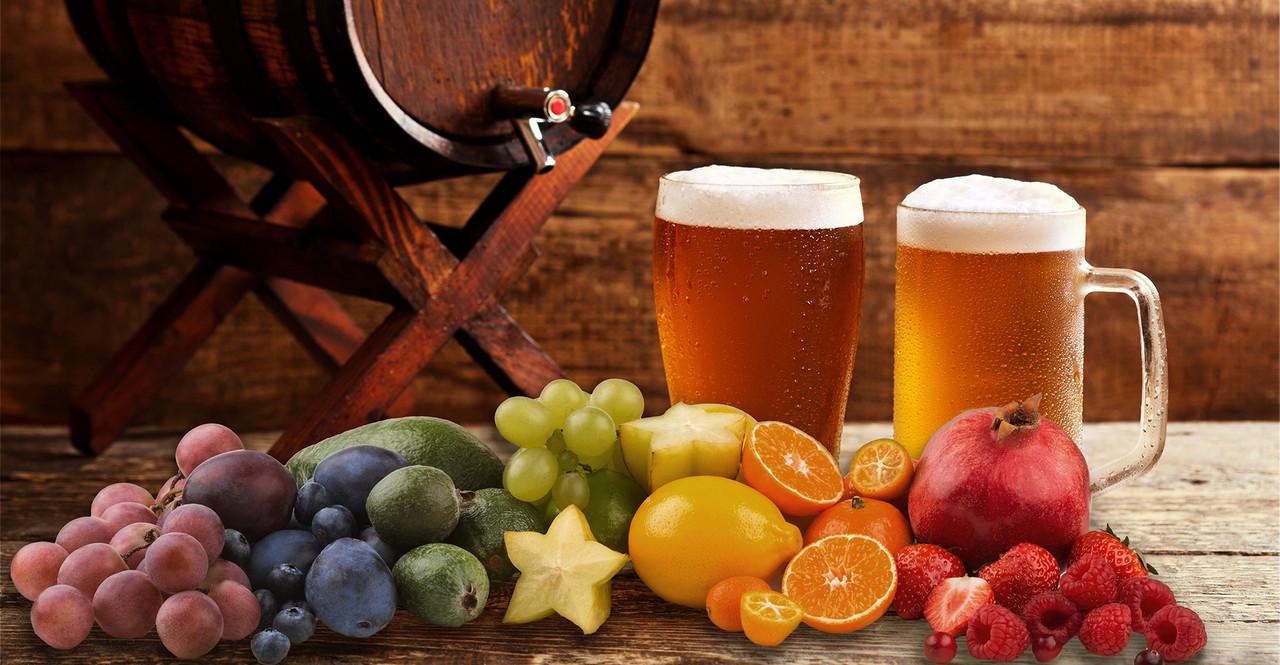 elaborar cerveza con fruta