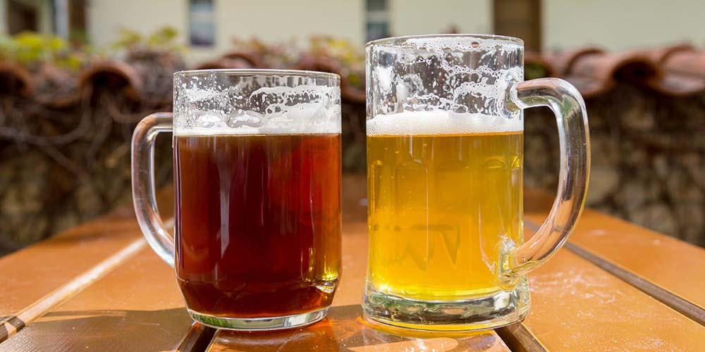 diferencia entre una cerveza ale y una lager