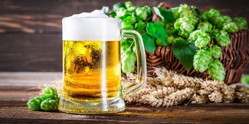 hacer una cerveza Lager