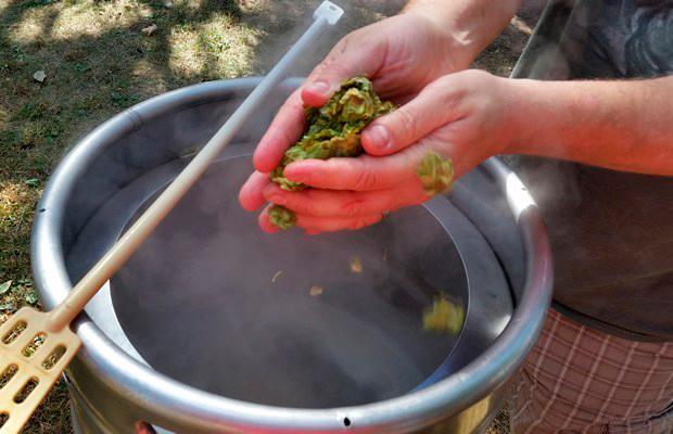 cómo hacer cerveza artesanal
