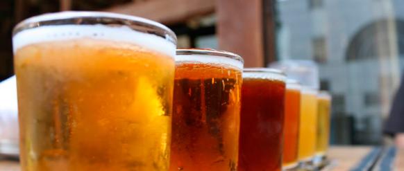 elaborar cerveza dentro del presupuesto